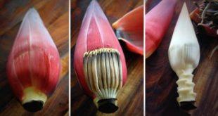Cách dùng hoa chuối chữa nhiều bệnh hiệu quả bất ngờ
